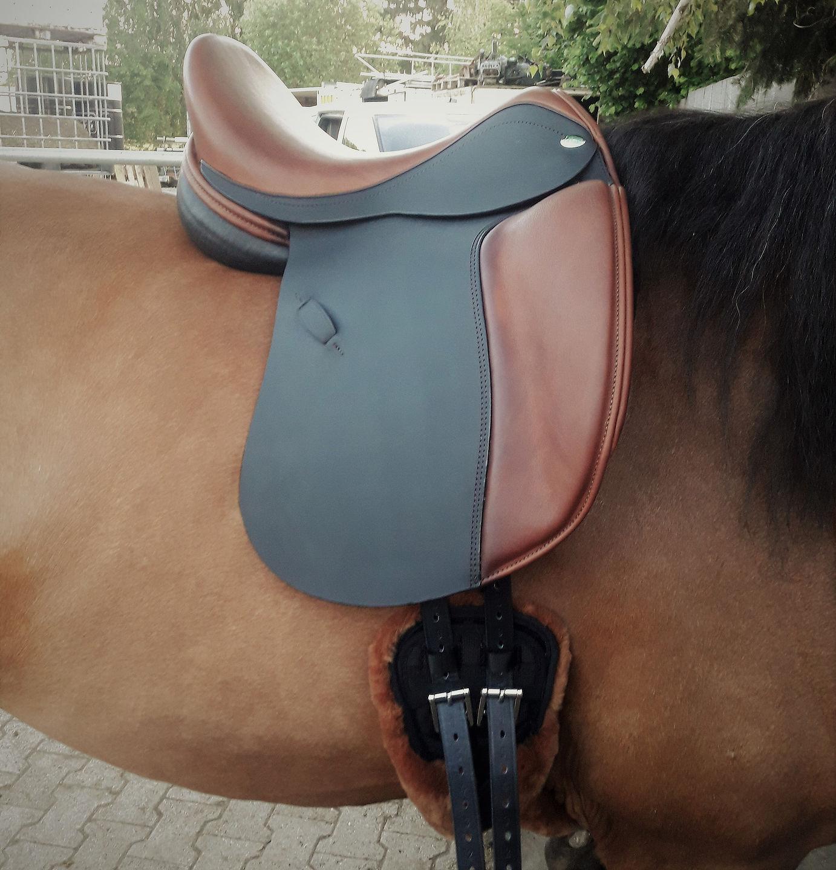 pferde_12