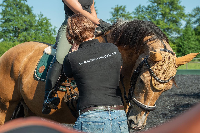 pferde_mietsattel_3