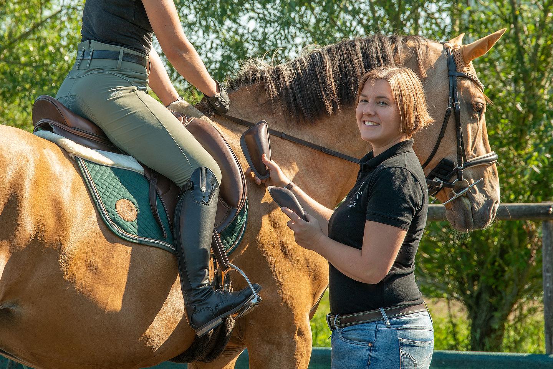 pferde_sattelanpassung_5